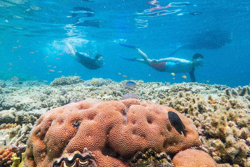 cruise-whitsundays-great-barrier-reef-35.jpg
